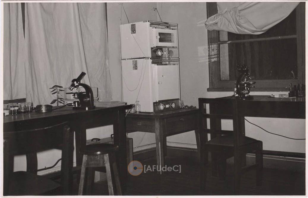 Laboratorio Anatomía Vegetal - ARCHIVO FOTOGRAFICO [AFUDEC]